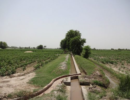 Entitlement Issues of Irrigation Water in South Punjab, Pakistan